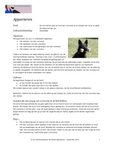 Handout workshop Apporteren blz 1 De Hondenacademie september 2014