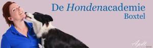 logo-ha-Boxtel-site-met-aptd